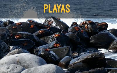 playas galapagos